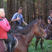 Совет в лесу