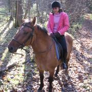 Караван-Инино. 18.10.2009. Кто сказал, что у коня не бывает лица?