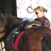 Melanouri horse farm.
