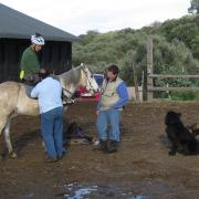 Прокат лошадей Зорайда (Zoraida horse riding).